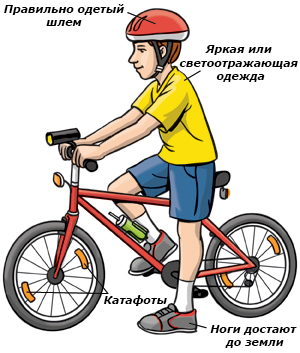 http://www.magazinmopedov.ru/assets/images/Articles/children/bicycle_safe.jpg